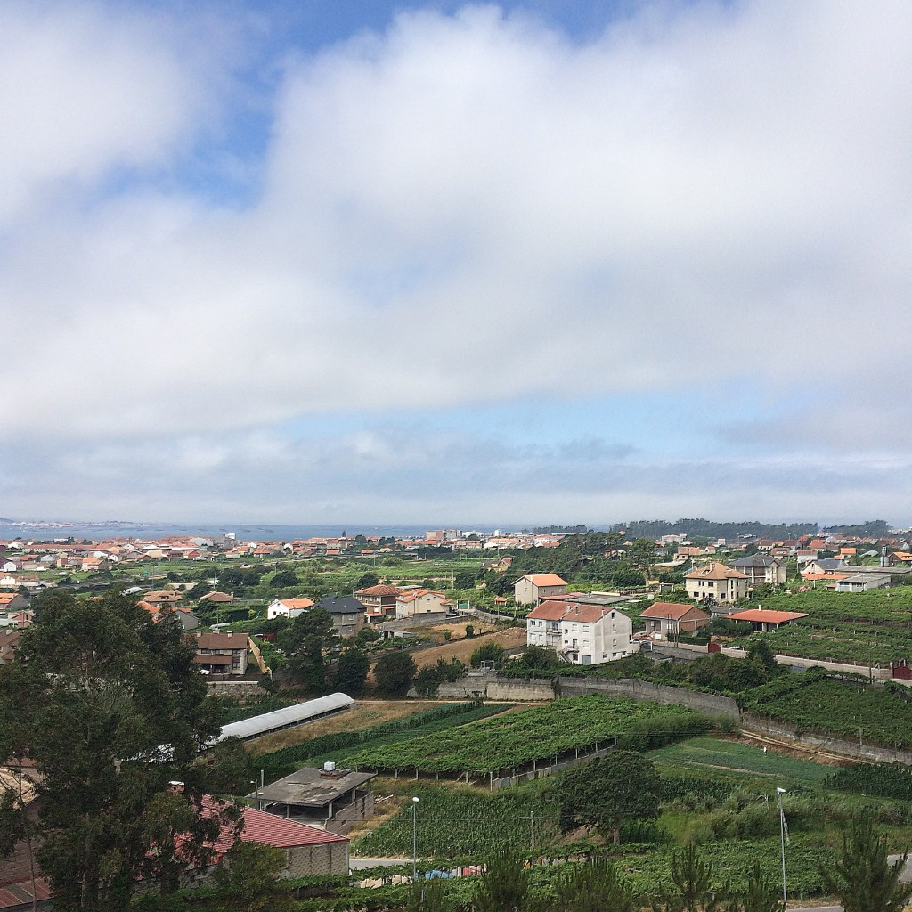 Vistas del Valle del Salnés, desde las Bodegas Martín Códax ©LAGASTRONOMA