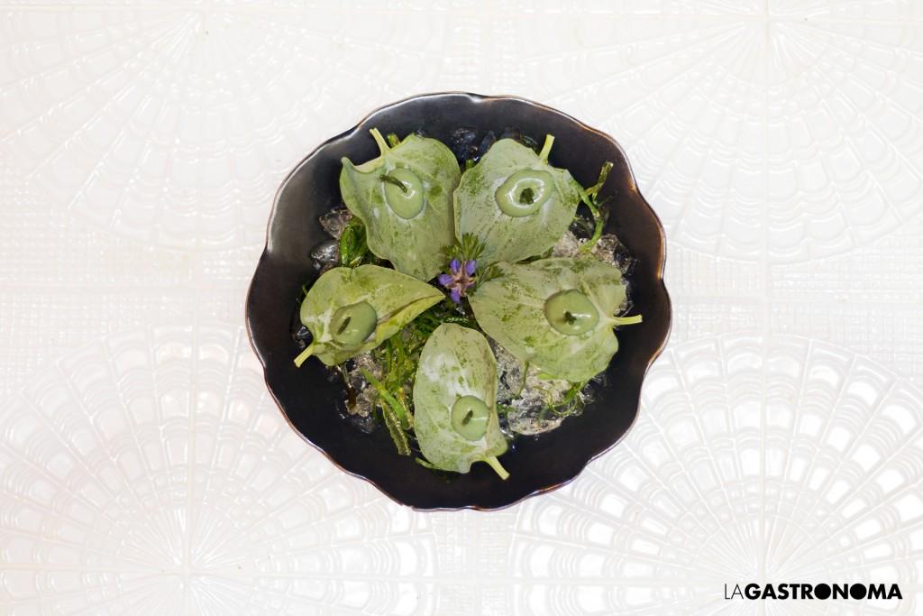 Las ostras veganas de BUMP GREEN ©Manuela Henao www.manuelahenao.com